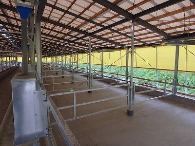 肥育牛舎・堆肥舎建設工事【回転柵】